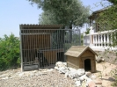 dog pen and kennel