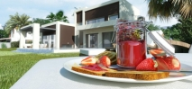D5632 Brand new contemporary style villas 11 (Large)